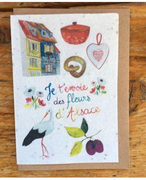 Je t'envoie des fleurs d'Alsace fleurs des champs