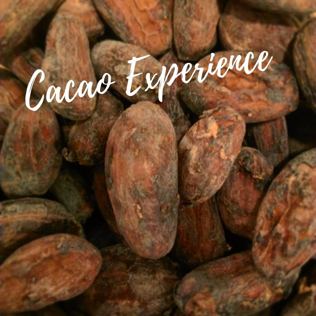 Cacao Experience