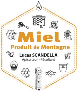 Lucas Scandella - Apiculteur