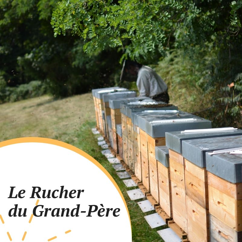 Rucher du Grand Père