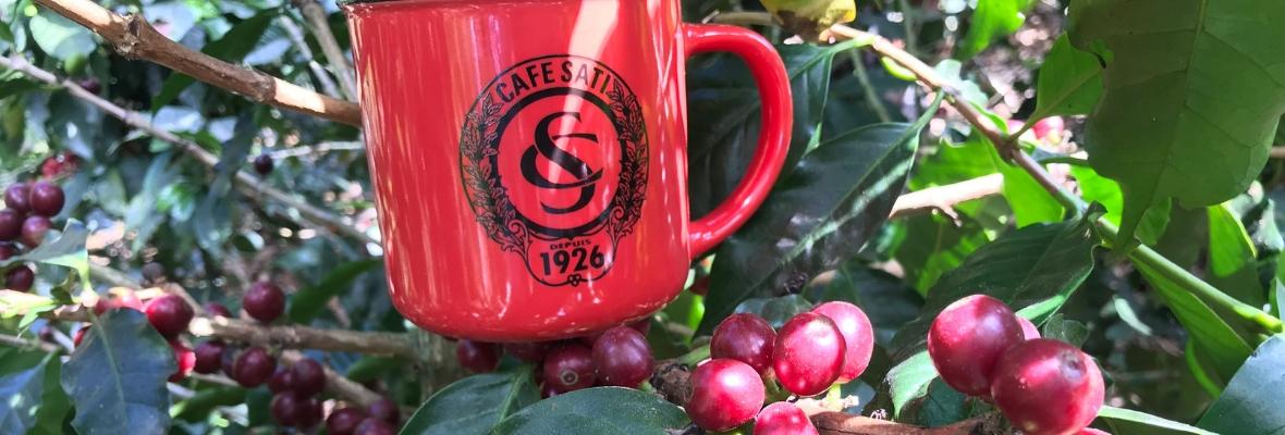 Tasse Café Sati